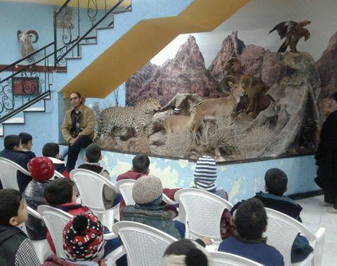 بازدید از موزه حیات وحش محیط زیست